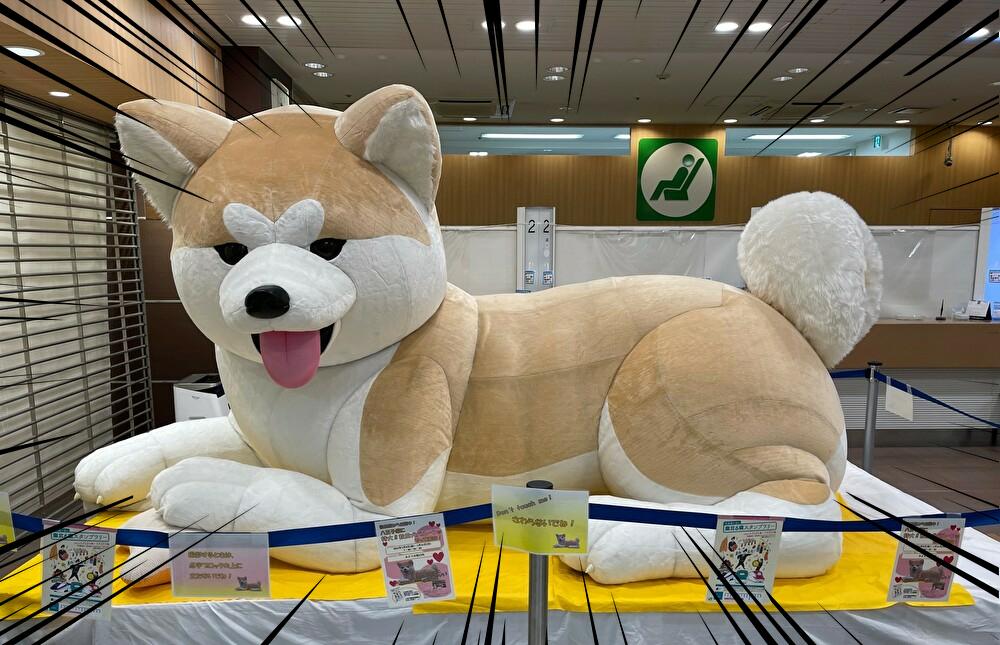 八王子みどりの窓口 秋田犬 AMUSE不動産