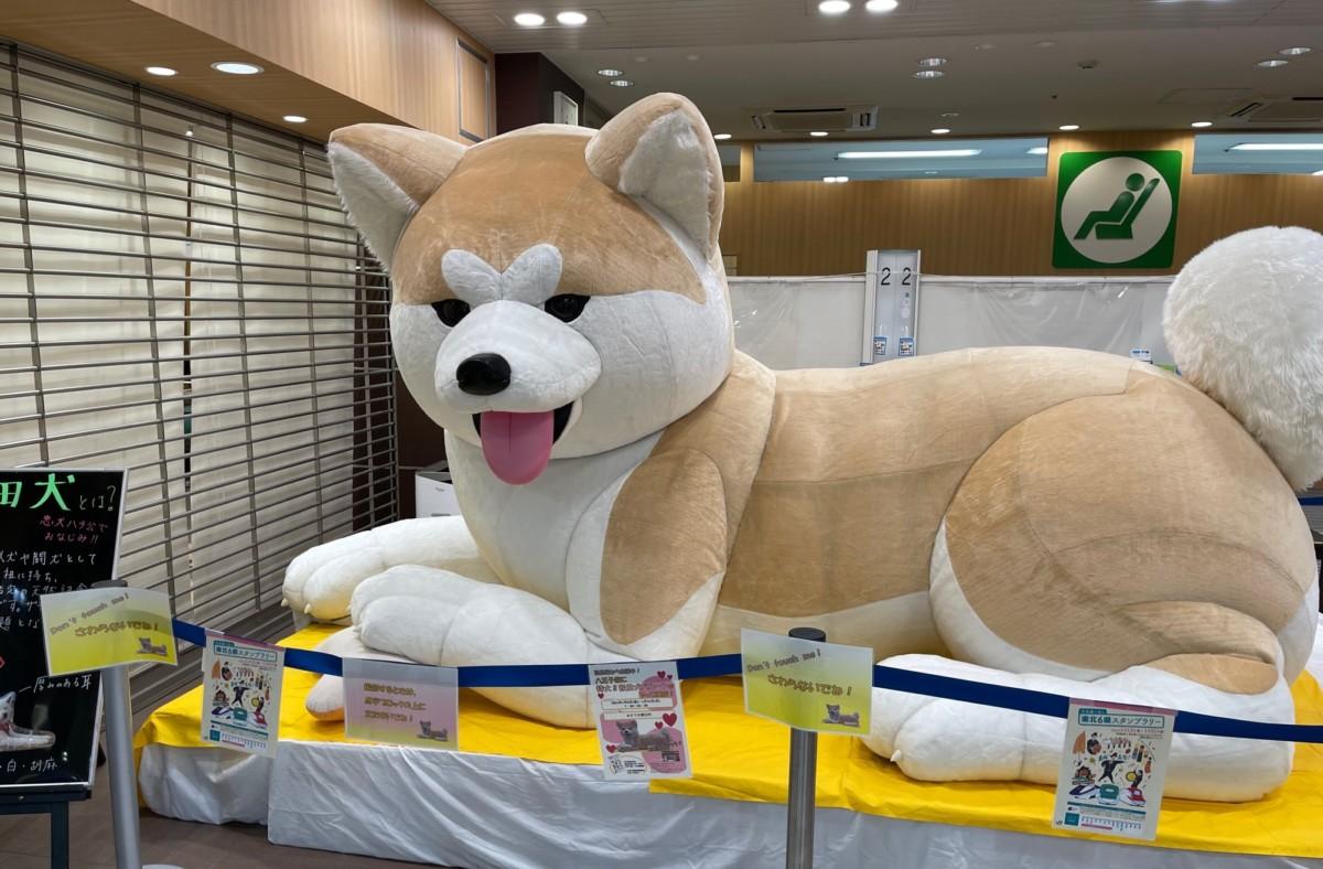 八王子駅 秋田犬 みどりの窓口