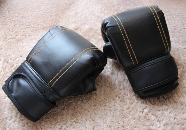 ボクサー ボクシング 物件探し